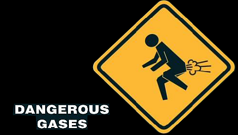 are those gases dangerous Class 2 gases  and dangerous goods these checklists are provided as tools to assist local areas  hs404 dangerous goods storage guideline page 4 of.